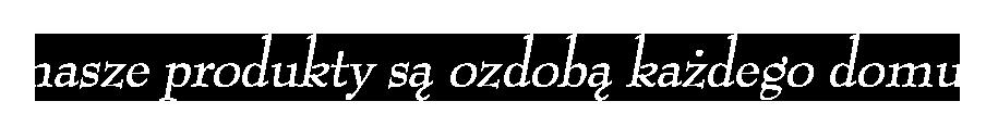 Komabud_zaune misja firmy